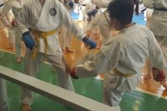 International-Master-Budo-2017-31