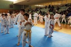 International-Master-Budo-2017-33