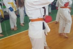 International-Master-Budo-2017-6
